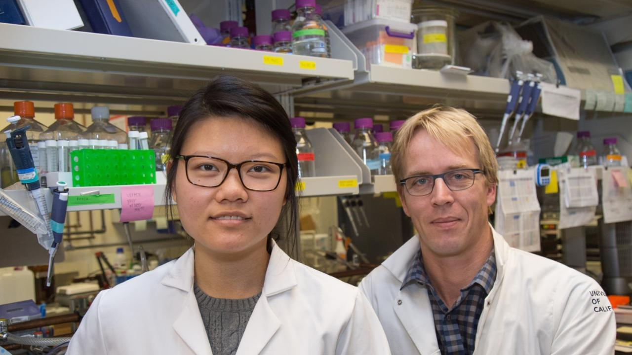 Sharon Lee and Mark Huising in lab